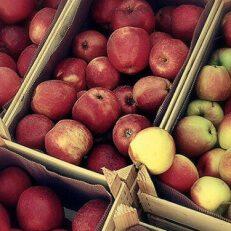 Do we overthink nutrition?