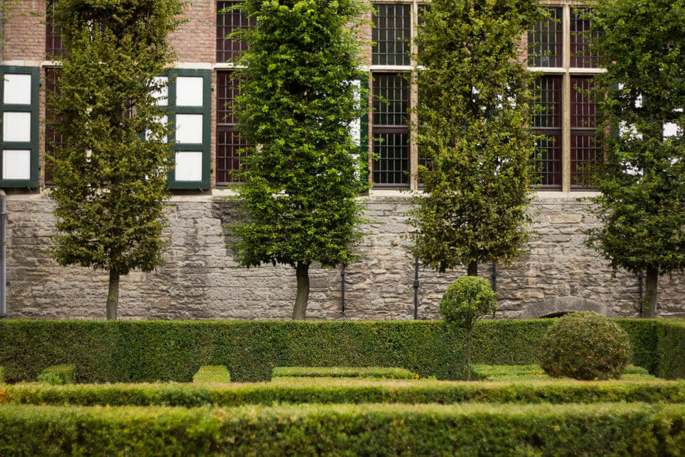 A garden in the Ghent city center