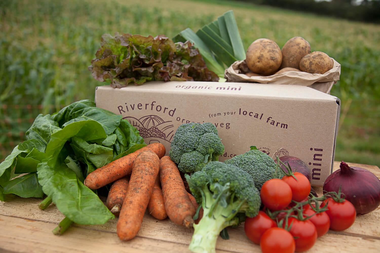Riverford Organic Veg Box
