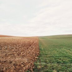 Soil is not a dirty word